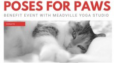 Poses for Paws to Benefit Because You Care
