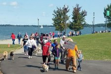 24th Annual Walk in the Park 2019